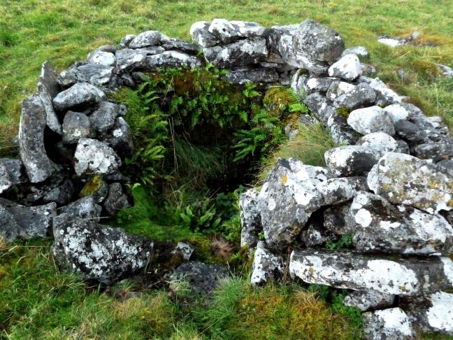 Tobar Chamín, Caherminnaun West, Kilfenora