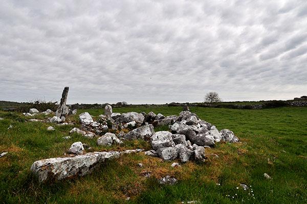 Tobar Chamín, Caherminnaun West, Kilfenora - Burren Holy Wells
